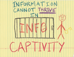 Information Captivity