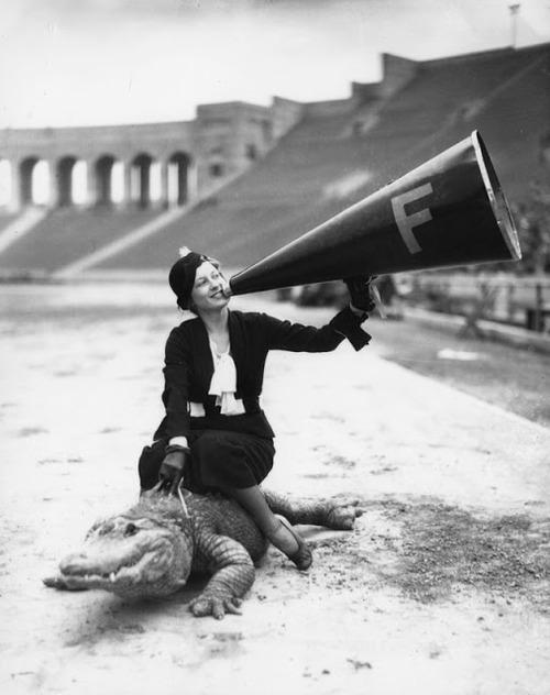 coccodrillo megafono